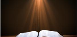 ಸತ್ಯದ ಬೆನ್ನು ಹತ್ತಿ…